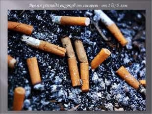 Время распада окурков от сигарет - от 1 до 5 лет