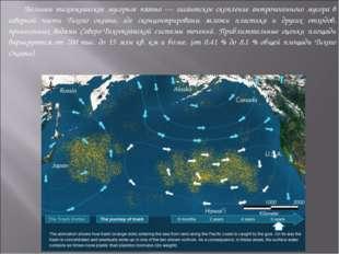 Большое тихоокеанское мусорное пятно — гигантское скопление антропогенного м