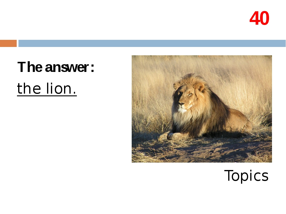 40 The answer: the lion. Topics