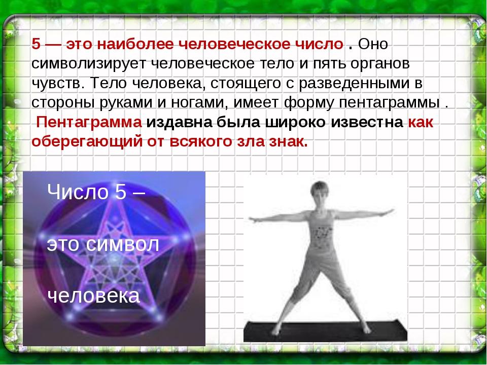 5 — это наиболее человеческое число . Оно символизирует человеческое тело и п...