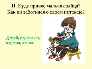 II. Куда принес мальчик зайца? Как он заботился о своем питомце? Домой, перев