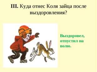 III. Куда отнес Коля зайца после выздоровления? Выздоровел, отпустил на волю.