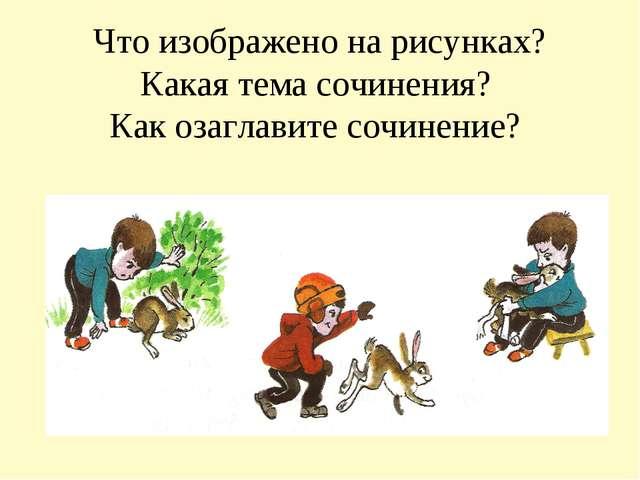 Конспекты Уроков по Биологии 6 Класс Пономарева
