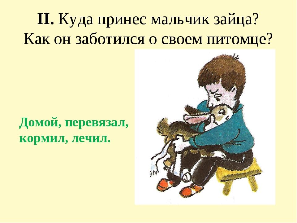II. Куда принес мальчик зайца? Как он заботился о своем питомце? Домой, перев...