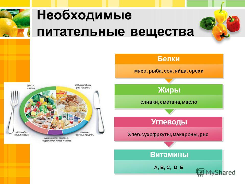 http://images.myshared.ru/417163/slide_3.jpg