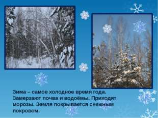 Зима – самое холодное время года. Замерзают почва и водоёмы. Приходят морозы