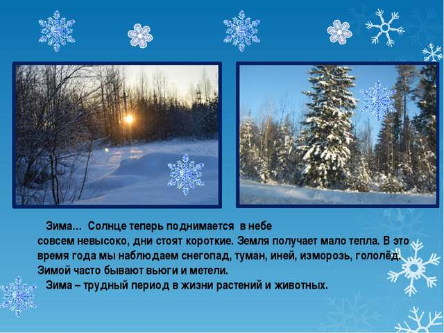 Зима… Солнце теперь поднимается в небе совсем невысоко, дни стоят короткие....