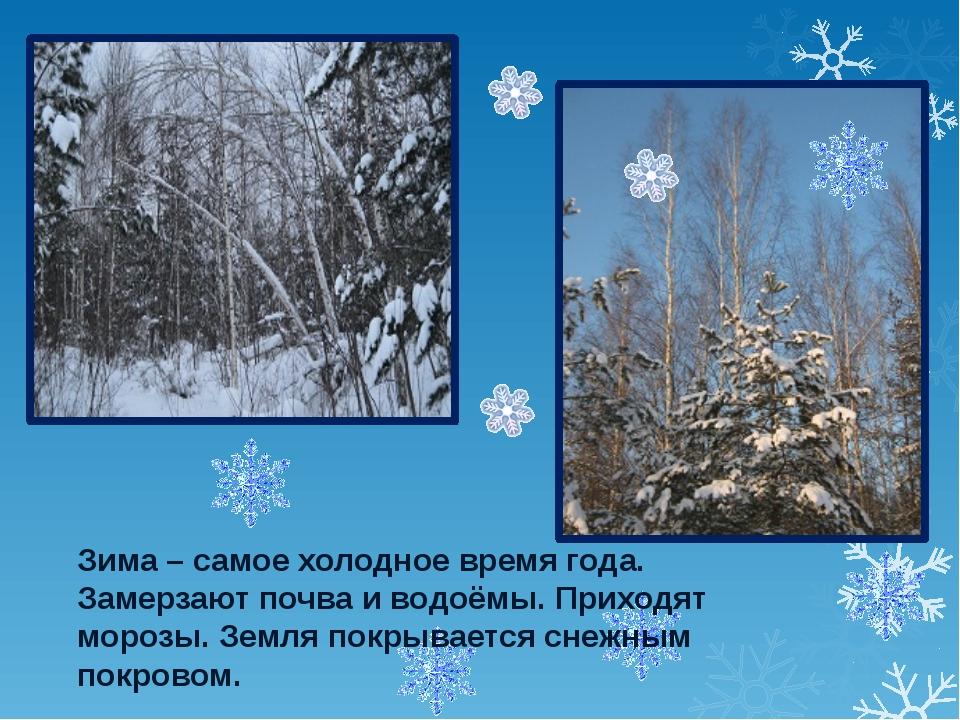 Зима – самое холодное время года. Замерзают почва и водоёмы. Приходят морозы...
