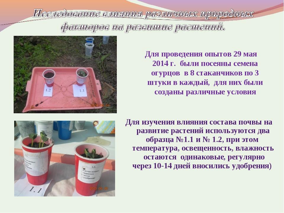 Для проведения опытов 29 мая 2014 г. были посеяны семена огурцов в 8 стаканчи...