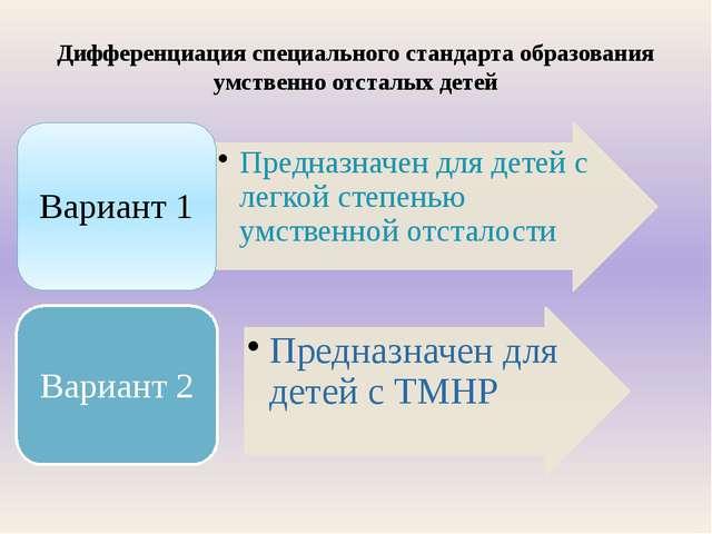 Дифференциация специального стандарта образования умственно отсталых детей