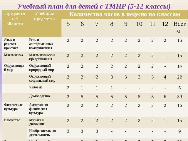Учебный план для детей с ТМНР (5-12 классы) Предметные области Учебные предме...