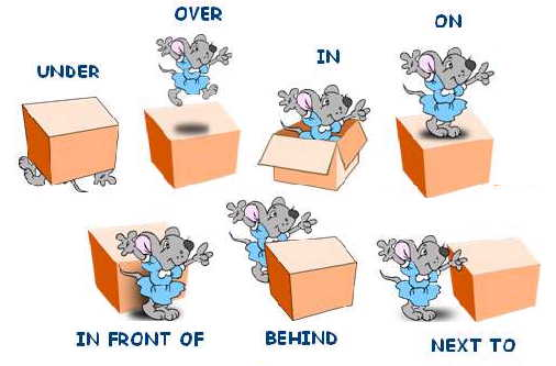 93710550_3949747_prepositions_of_position.jpg