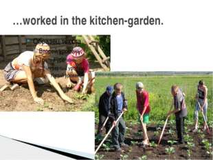 …worked in the kitchen-garden.