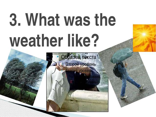 3. What was the weather like?