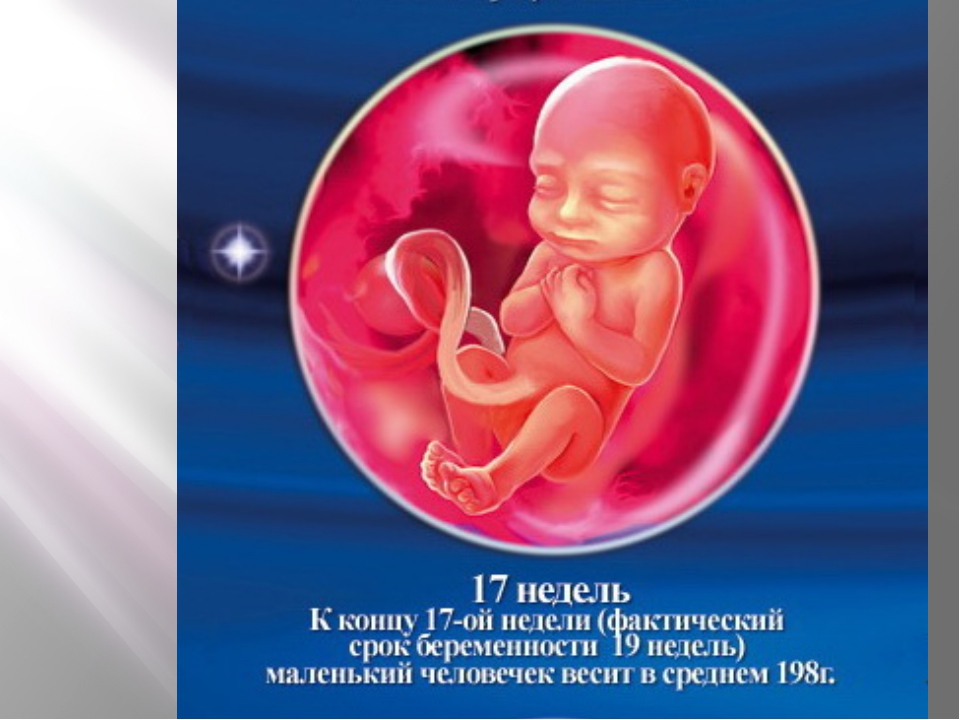 Фото на 17 неделе беременности