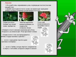 3.Найдите в тексте описание изменения цвета Розы. Раскрасьте, как менялся цв