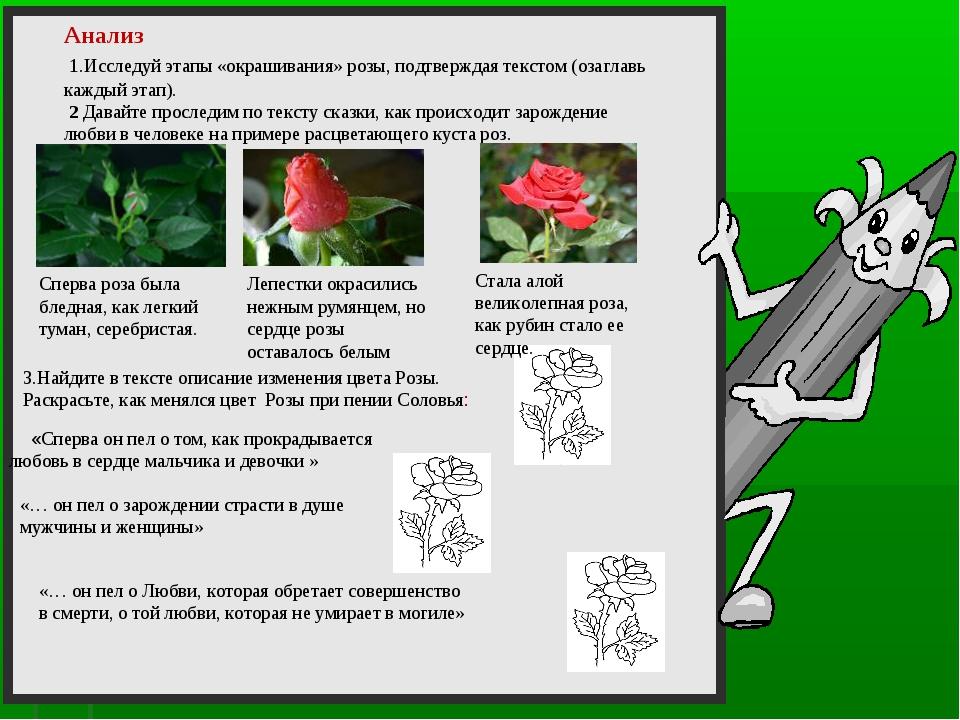 3.Найдите в тексте описание изменения цвета Розы. Раскрасьте, как менялся цв...