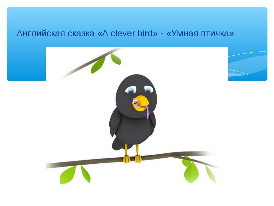 Английская сказка «A clever bird» - «Умная птичка»