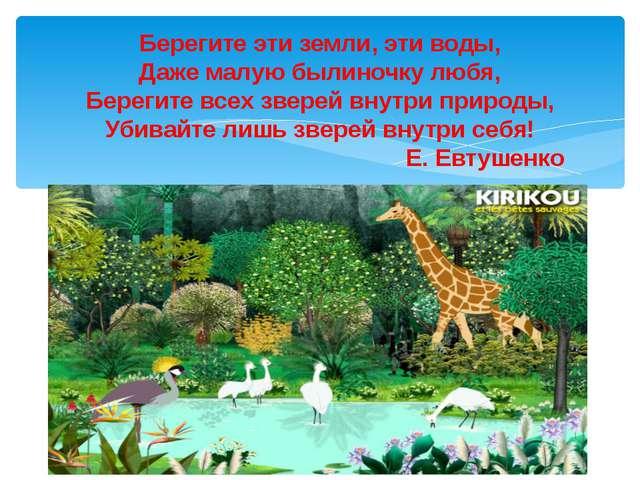 Берегите эти земли, эти воды, Даже малую былиночку любя, Берегите всех зверей...