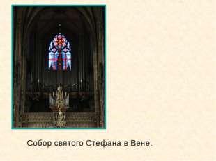 Собор святого Стефана в Вене.