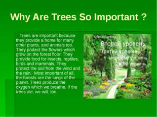 Why Are Trees So Important ? Trees are important because they provide a home
