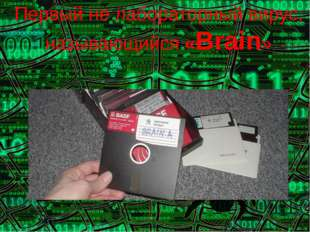 Первый не лабораторный вирус, называющийся «Brain»