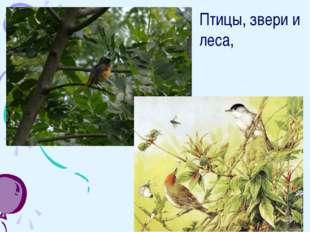 Птицы, звери и леса,