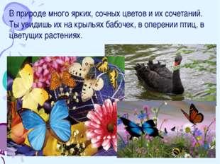 В природе много ярких, сочных цветов и их сочетаний. Ты увидишь их на крыльях