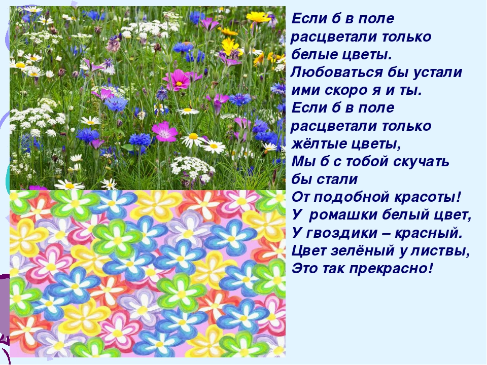 Если б в поле расцветали только белые цветы. Любоваться бы устали ими скоро...