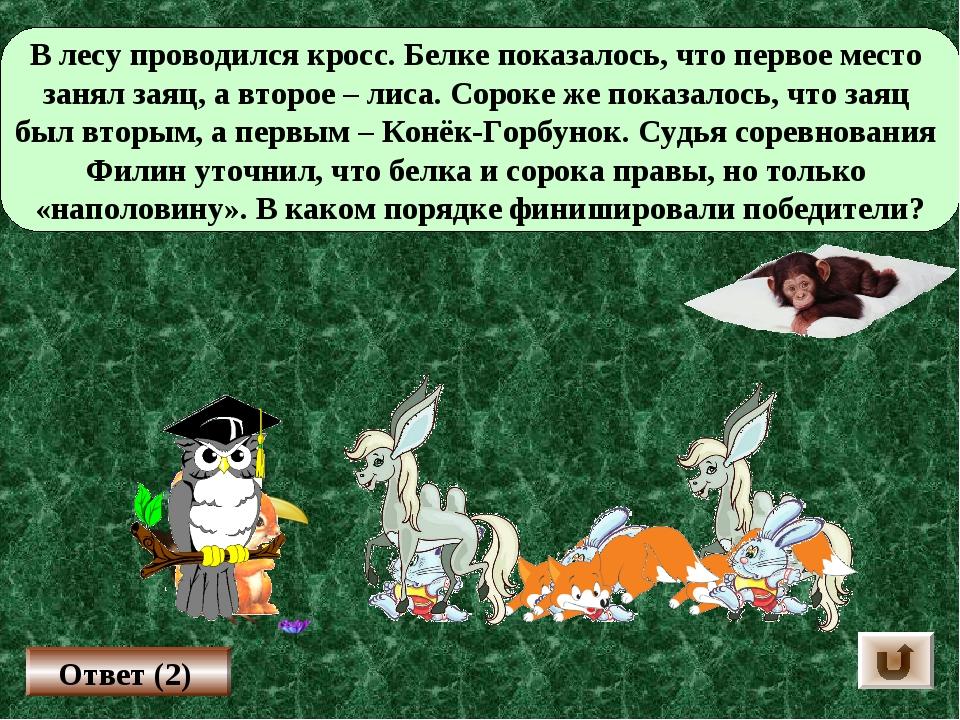 В лесу проводился кросс. Белке показалось, что первое место занял заяц, а вто...