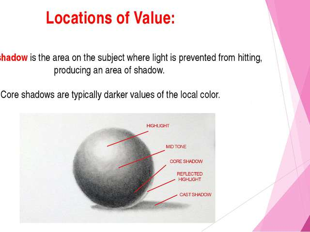 Locations of Value: The core shadow is the area on the subject where light is...