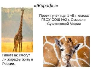 «Жирафы» Проект ученицы 1 «Б» класса ГБОУ СОШ №2 г. Сызрани Сусленковой Марии