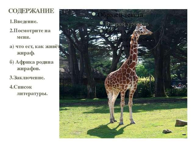 1.Введение. 2.Посмотрите на меня. а) что ест, как живёт жираф. б) Африка роди...