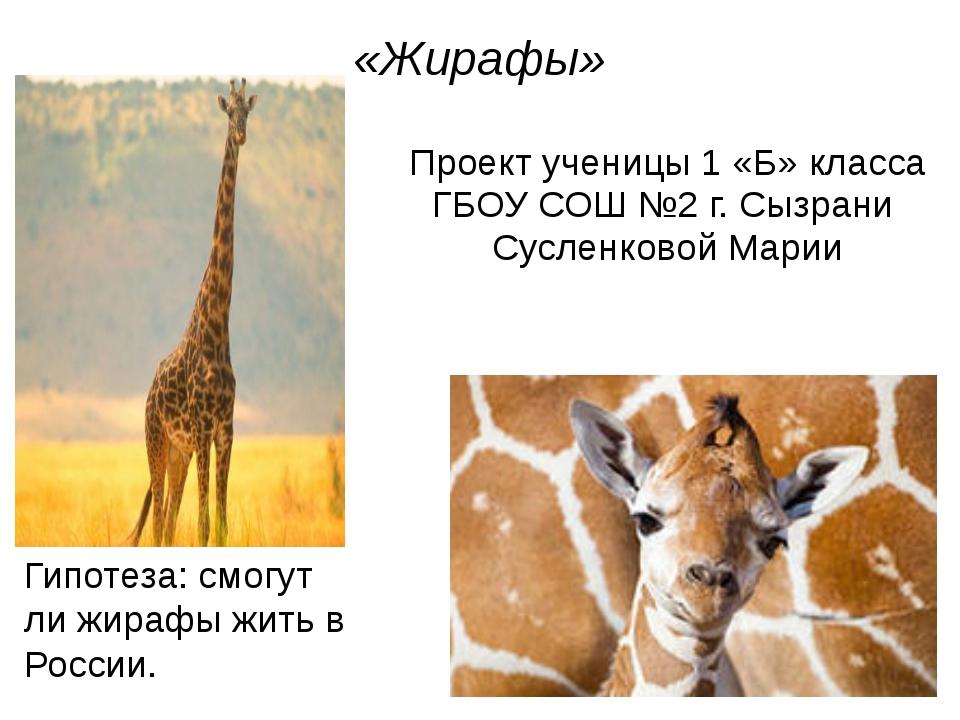 «Жирафы» Проект ученицы 1 «Б» класса ГБОУ СОШ №2 г. Сызрани Сусленковой Марии...