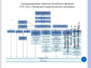 Документооборот Балейского филиала ГОУ СПО «Читинского педагогического коллед