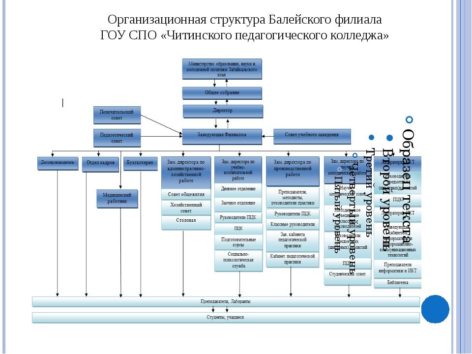 Документооборот Балейского филиала ГОУ СПО «Читинского педагогического коллед...