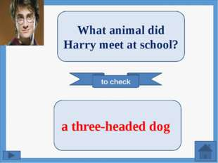 to check What animal did Harry meet at school? a three-headed dog