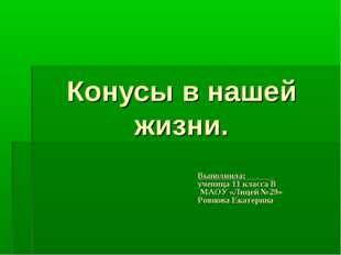 Конусы в нашей жизни. Выполнила: ученица 11 класса В МАОУ «Лицей №29» Ровнова