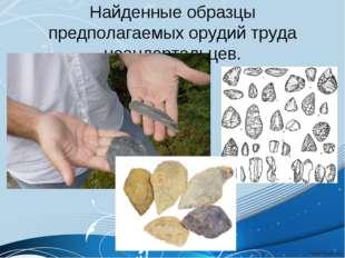 Найденные образцы предполагаемых орудий труда неандертальцев.