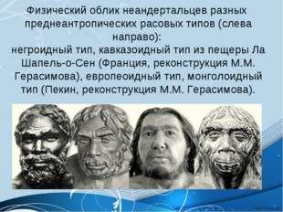 Физический облик неандертальцев разных преднеантропических расовых типов (сле