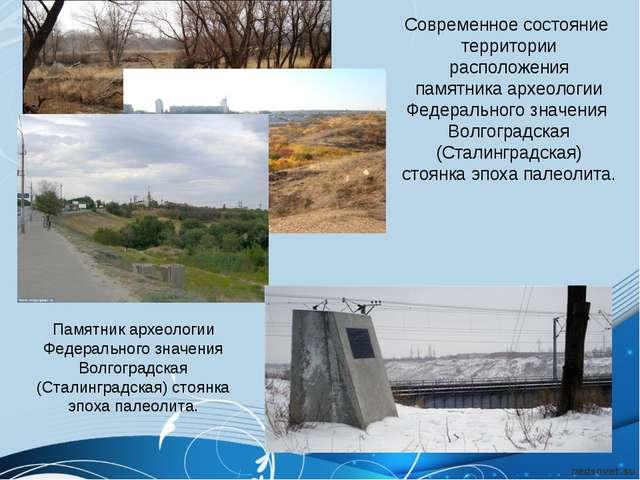 Современное состояние территории расположения памятника археологии Федерально...