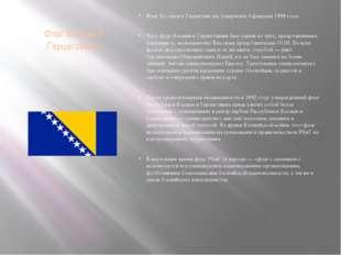 Флаг Боснии и Герцеговины Флаг Бо́снии и Герцегови́ны утверждён 4 февраля 199