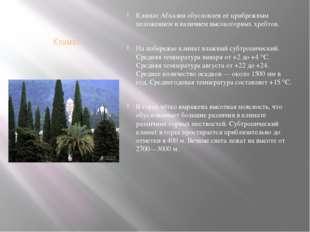 Климат Климат Абхазии обусловлен её прибрежным положением и наличием высокого