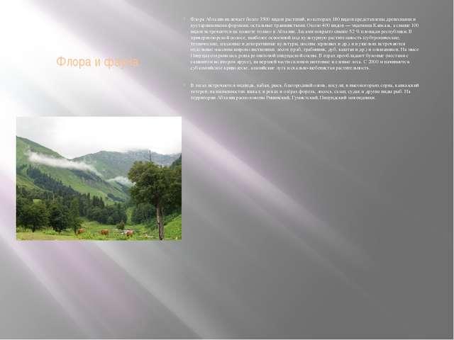 Флора и фауна Флора Абхазии включает более 3500 видов растений, из которых 18...