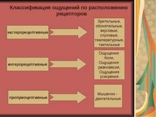Классификация ощущений по расположению рецепторов экстерорецептивные интероре