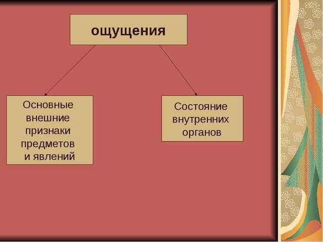 ощущения Основные внешние признаки предметов и явлений Состояние внутренних о...