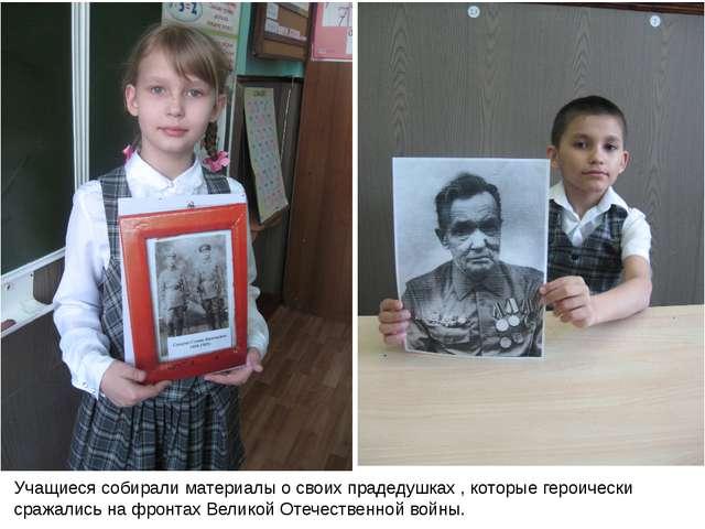Учащиеся собирали материалы о своих прадедушках , которые героически сражалис...