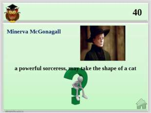 40 a powerful sorceress, may take the shape of a cat Minerva McGonagall