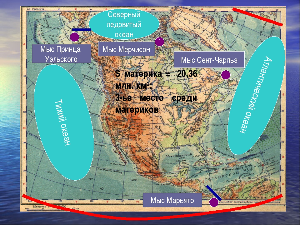 Тихий океан Атлантический океан Северный ледовитый океан S материка = 20,36 м...