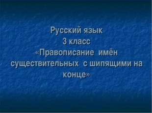 Русский язык 3 класс «Правописание имён существительных с шипящими на конце»